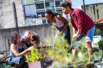 Site in overview - Friends Gardening